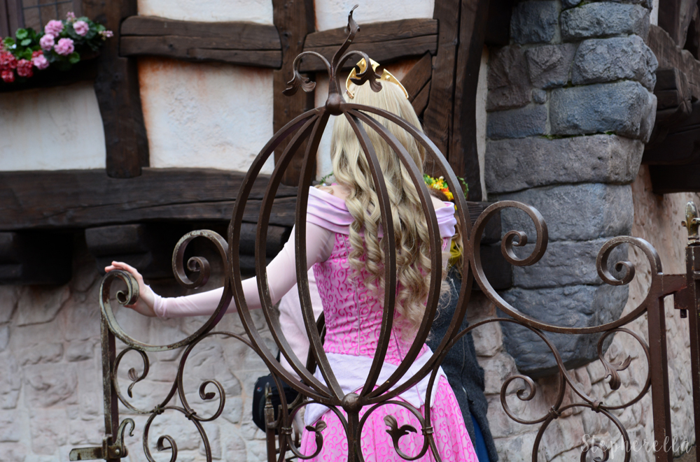 Princess Aurora - Stepherella