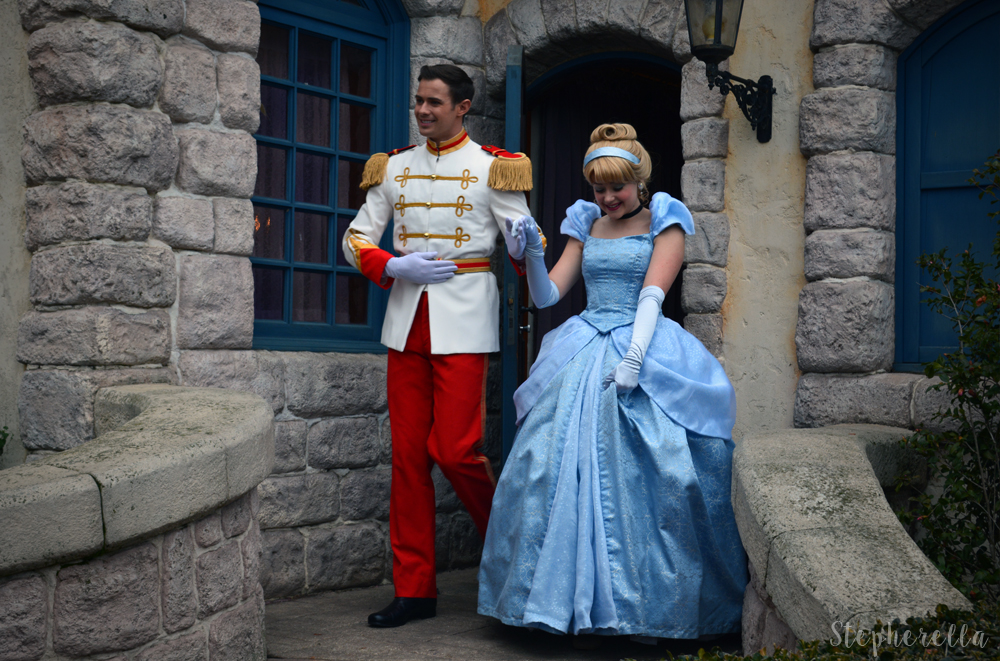 Cinderella-Stepherella