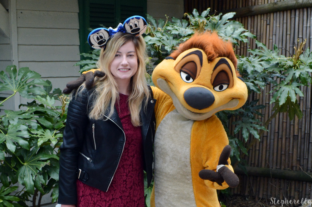 Disneyland-Paris-Timon-Meet-Stepherella