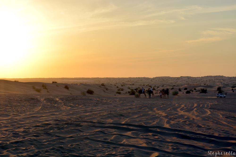 Dubai-Sunset-Desert-Stepherella