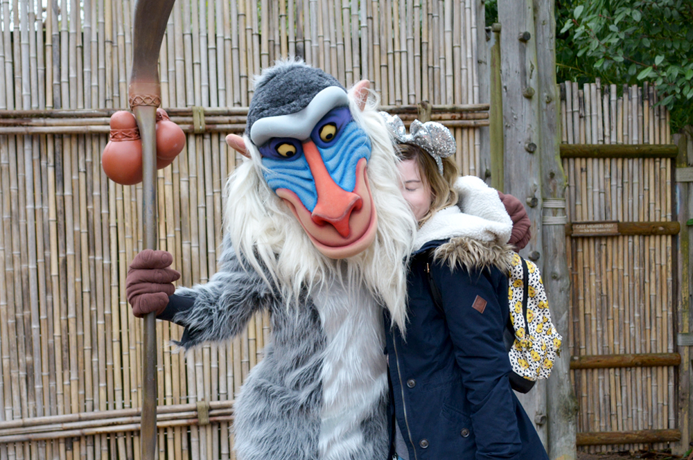 Rafiki Meet Disneyland Paris Stepherella
