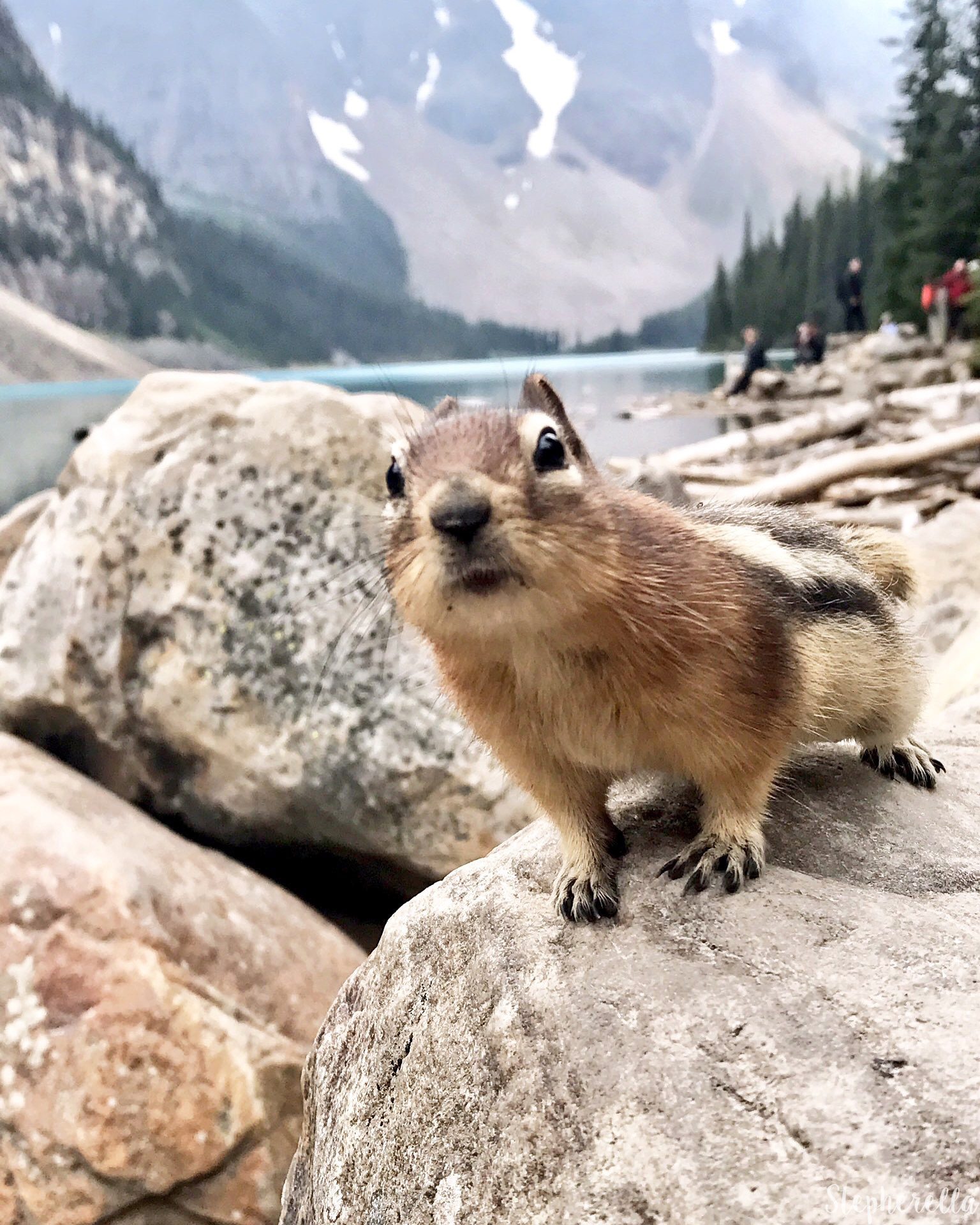 Chipmunk-Moraine-Lake