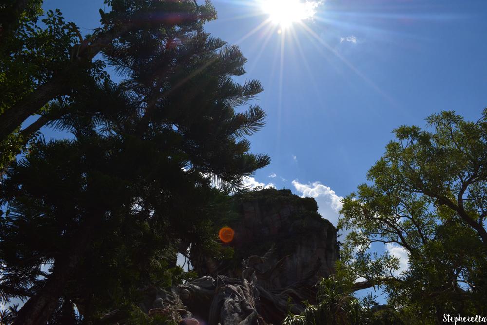 Pandora-Walt-Disney-World