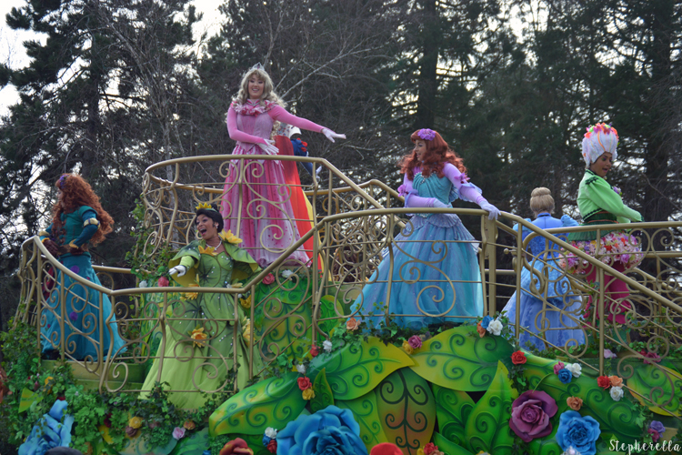 Pirates and Princess Festival Float Tiana
